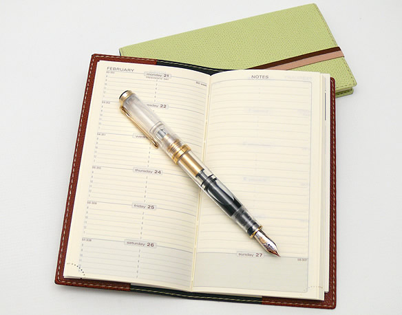 Space 17 Weekly Planner & Pelikan Fountain Pen
