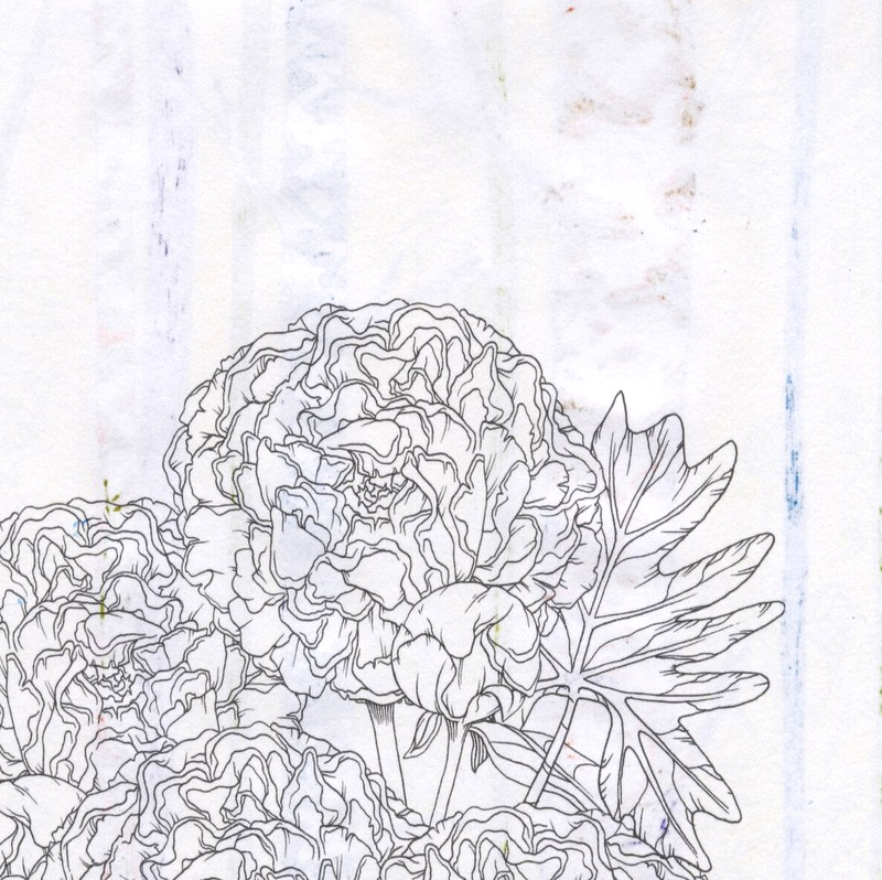 Clairefontaine Coloring Book - reverse of page colored with fountain pen ink