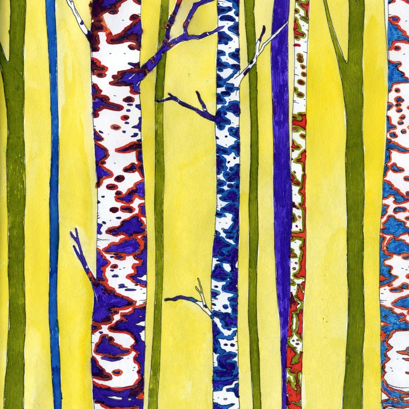 Clairefontaine Coloring Book - birch trees colored with fountain pen ink